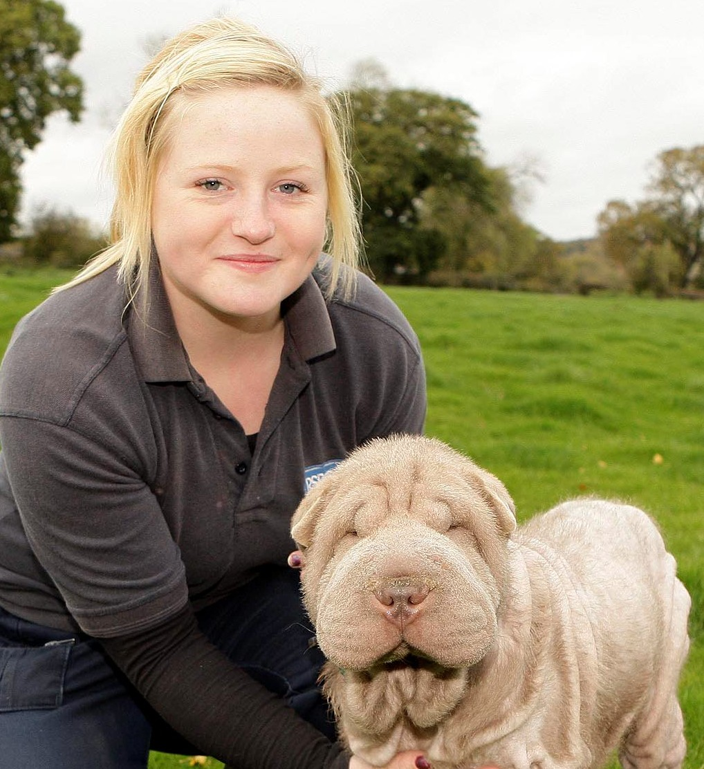 Bald dog Pearl recovers at the RSCPA's Coventry , Nuneaton and district branch and is cared for by Lizzie Aston