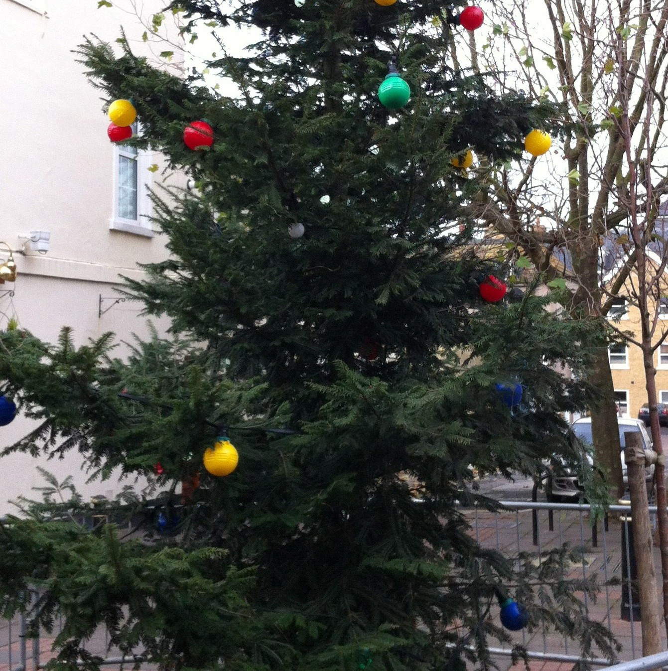 The scrawny Christmas tree in Herne Bay town centre which was booed by residents when the lights were turned on