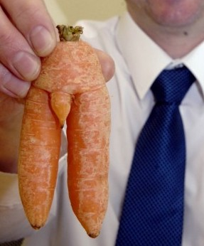 Mark Easham with his carrot that looks just like a naked man