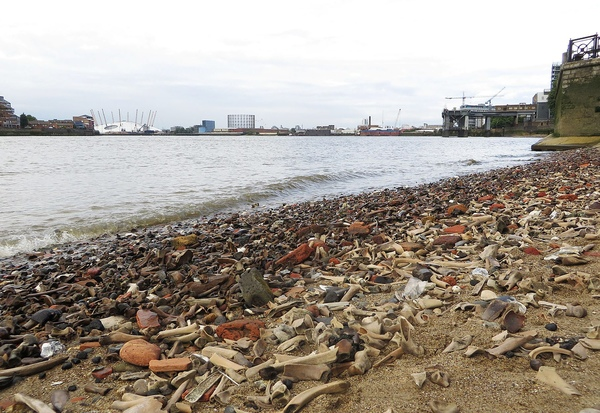 Chris Harvey was on a stroll outside his home when he saw the mysterious objects on the river bank
