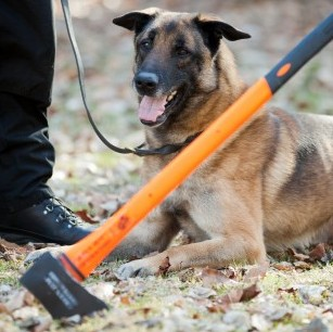 Rossi the Belgian Shepherd with the axe she disarmed and from a drunken thug