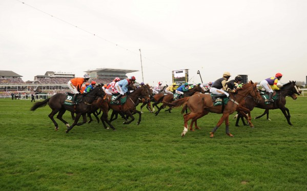 Forty horses will take part in this years 2014 Grand National at Aintree