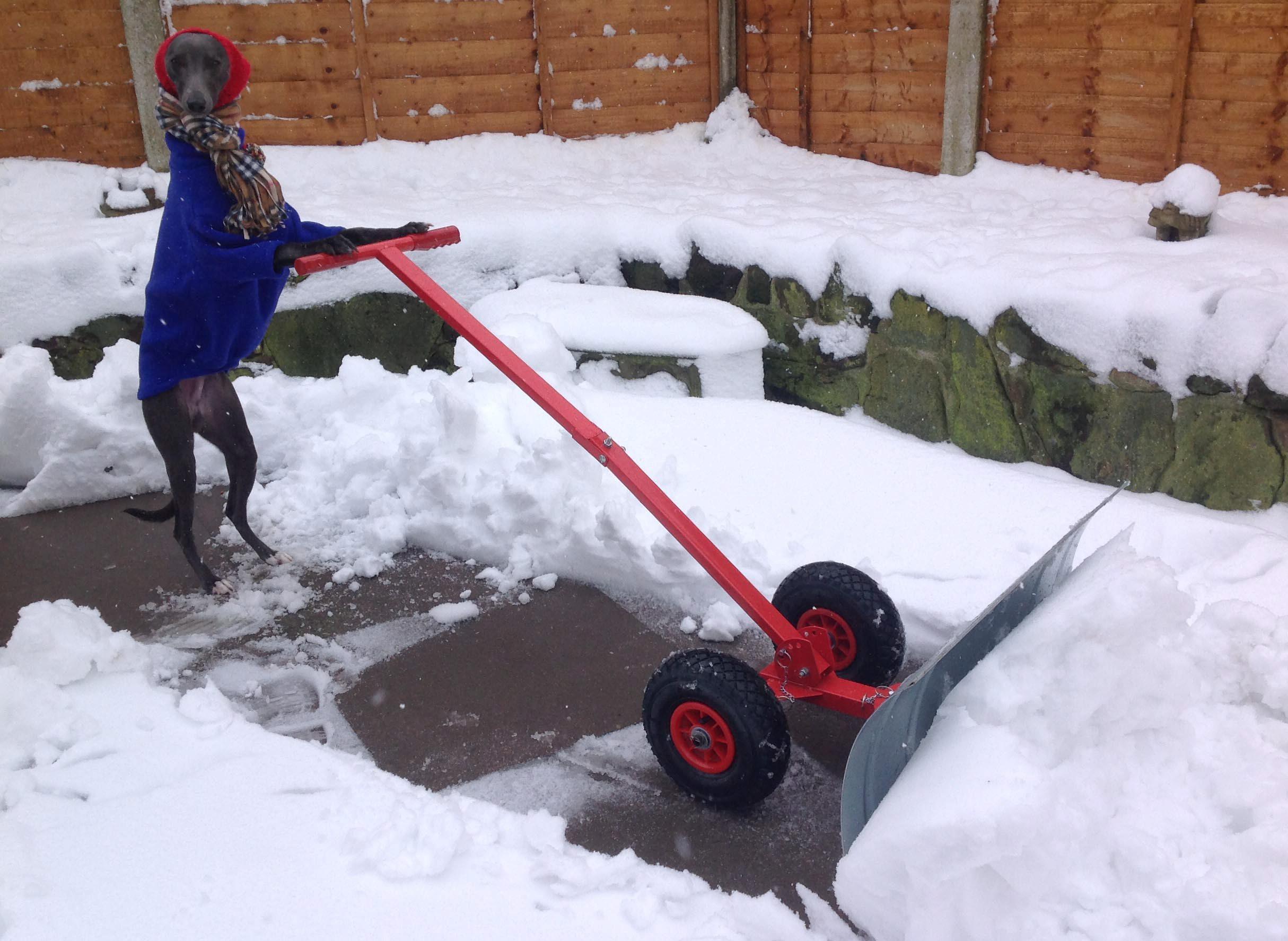 Прикольные картинки чистить снег