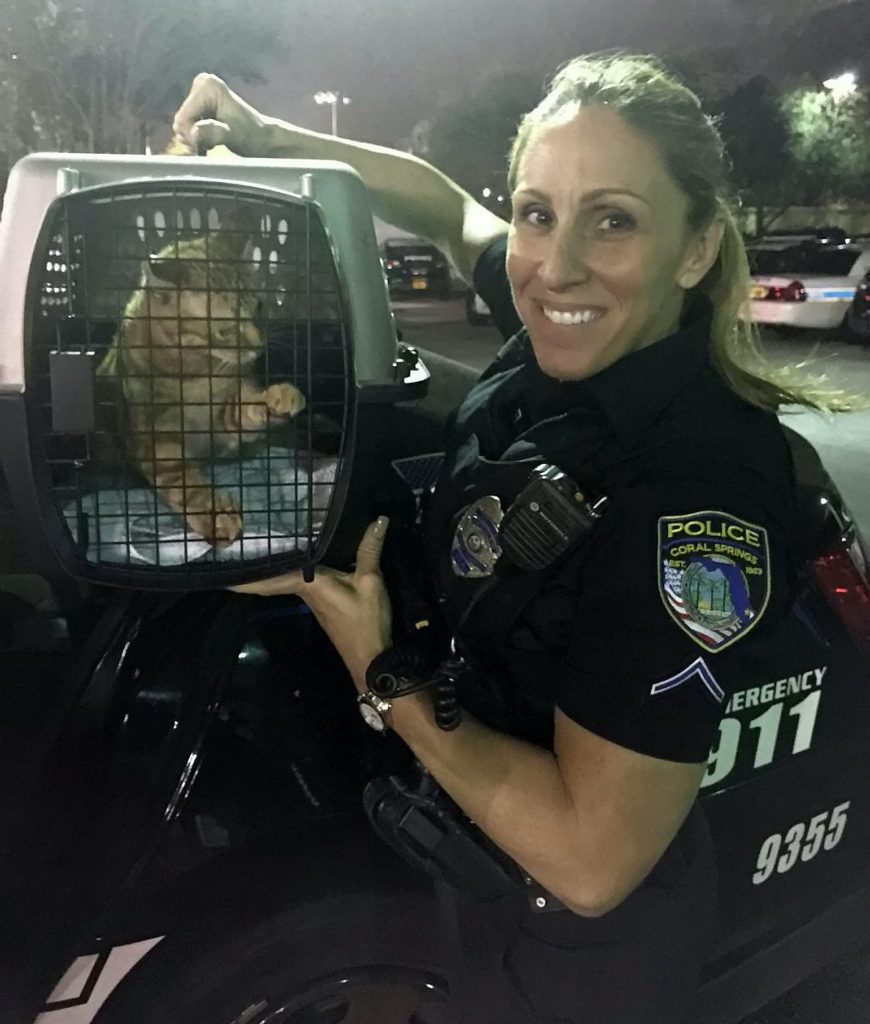 This is Gretchen Byrne the kindhearted cop who feeds stray cats while out on patrol - and ended up rescuing more than 60 of them.