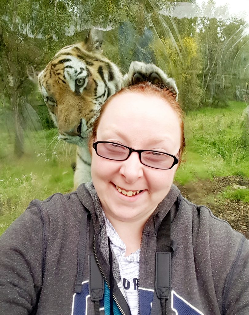 Donna Martin managed to snap this fantastic selfie with Marty the Amur tiger on a visit to RZSS Highland Wildlife Park recently.   (© Highland Wildlife Park /  SWNS)