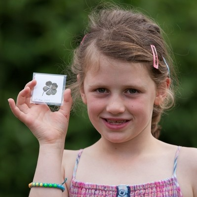Olivia Wrenn, 7, with her rare five-leaf-clover