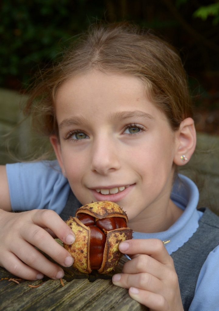 Evie Jacobs, 8 who found a horse chestnut husk containing five conkers.