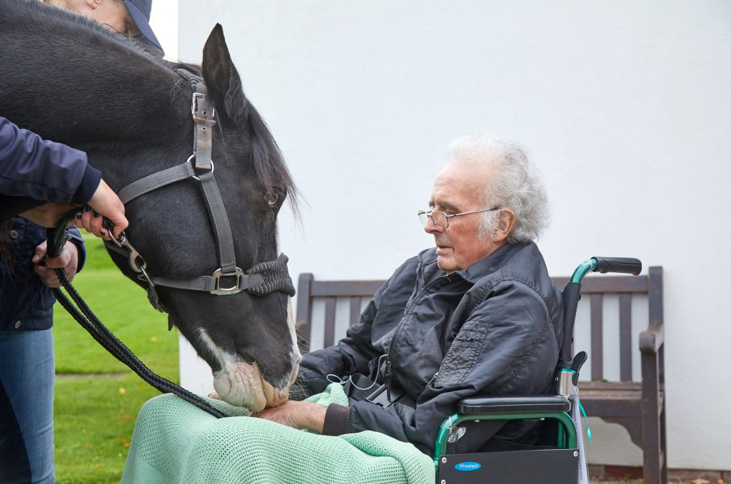A terminally-ill pensioner was granted his dying wish after being reunited with his beloved horse one final time.