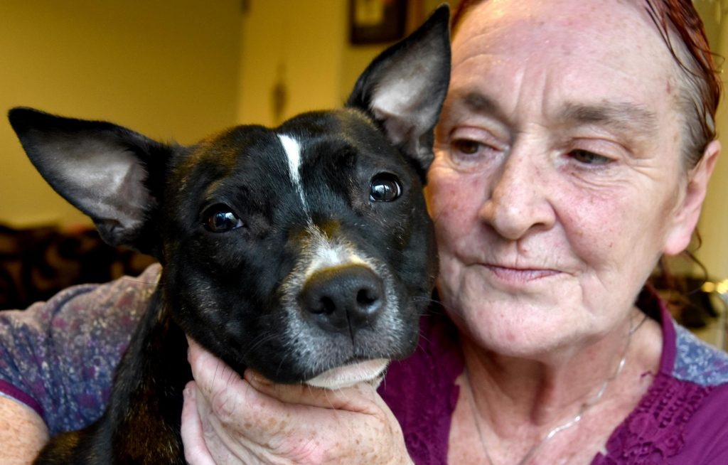 Jane Stock, 60, with best pal Bobby-Jay.